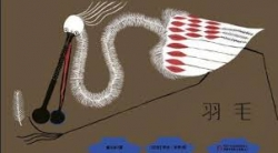 Yu mao