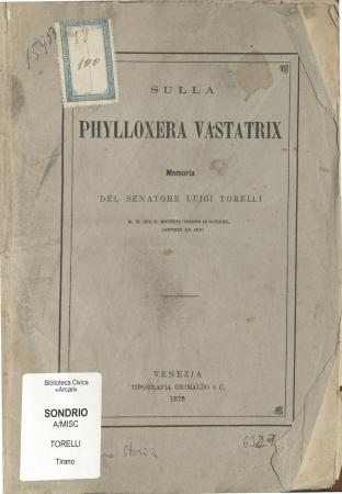 Sulla Phylloxera Vastatrix